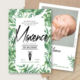 faire part naissance jungle tropical chic feuilles et animal