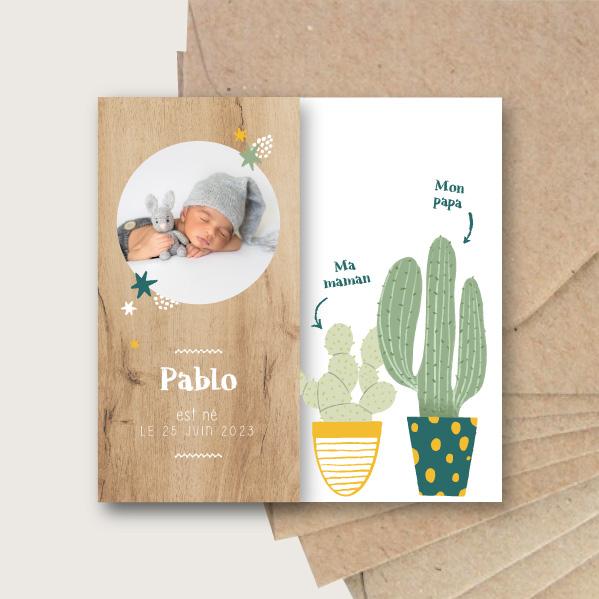 faire-part naissance mini cactus mignon mexique